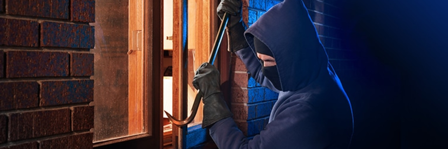 <b>Theft Crimes:</b><br>Stealing property with the intent to permanently deprive the owner
